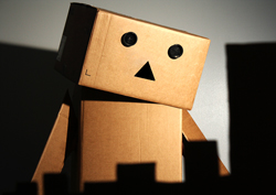 What's Wrong Danbo?